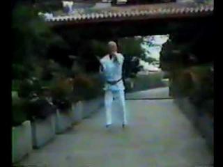 Hakutsuru No Mai kata - Kimo Wall