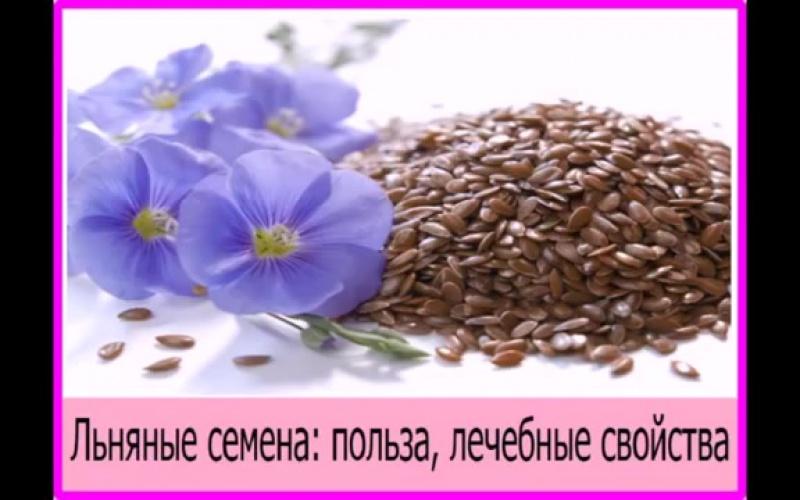 Семена льна_ польза, лечебные и полезные свойства. Чем полезные семена льна для