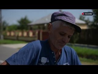 Pesta porcină și deznădejdea țăranului român