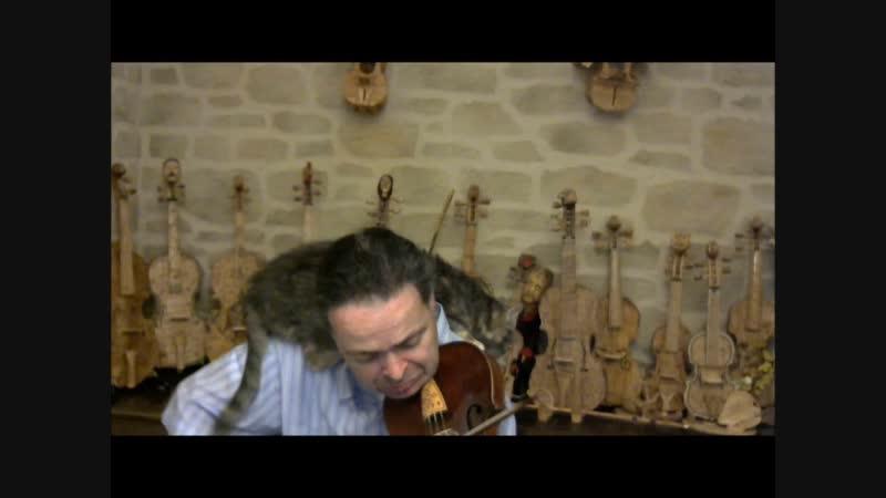 Allemande - Giuseppe TORELLI