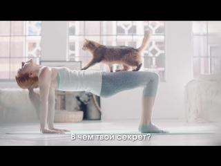 Perfetc fit_yoga 15 sec