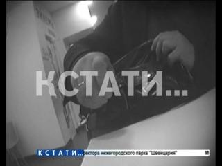 Начальник управления КУГИ за взятки торговал служебной информацией