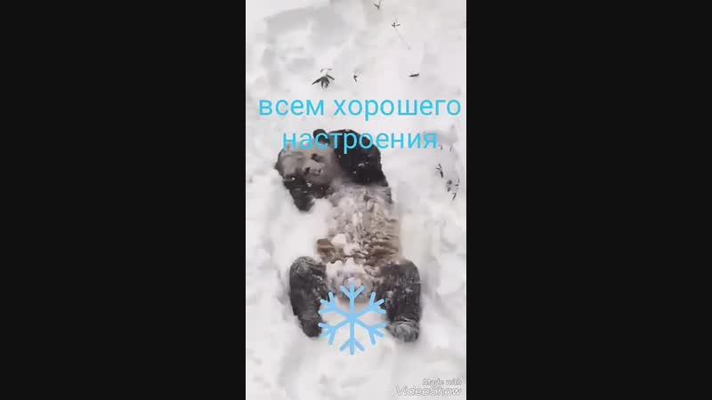VIDEO 2019 11 14 09 44