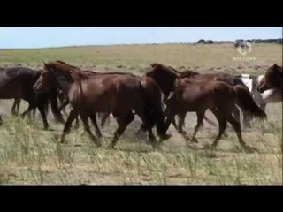 Монголия – В тени Чингисхана   Mongolsko - V tieni Dzingischana (2010)