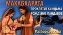 Махабхарата Часть 8 1 Проклятие Киндама Рождение Пандавов
