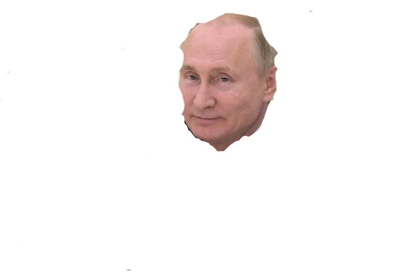 Россия по статистике ООН, занимает: