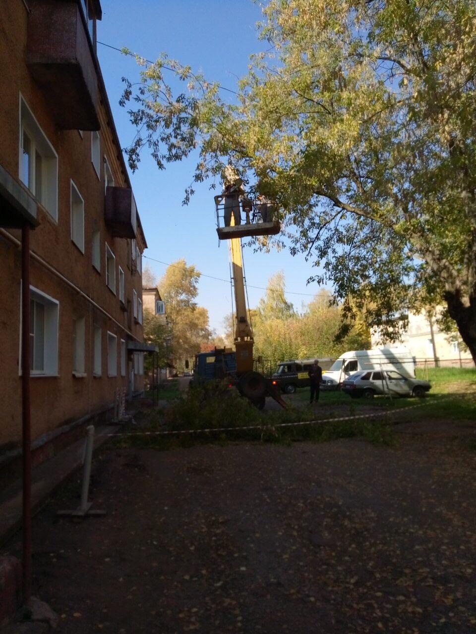 Улица Цеховая дом 6 снос аварийных деревьев
