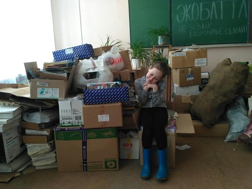 Раздельный сбор в Архангельске: миф или реальность?, изображение №8