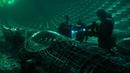 Загадочные сцены фильма Аванпост масштабная перестрелка и столкновение с неземным