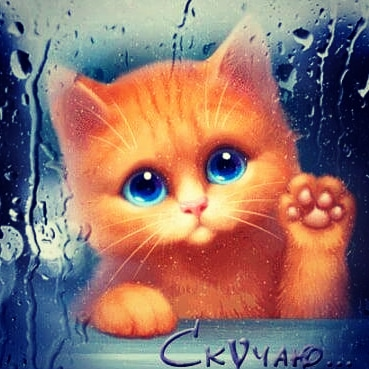 Анимация котенок скучает имеющих личные