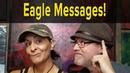 Eagle Spirit Animal Interpreting Messages From Spirit Guides