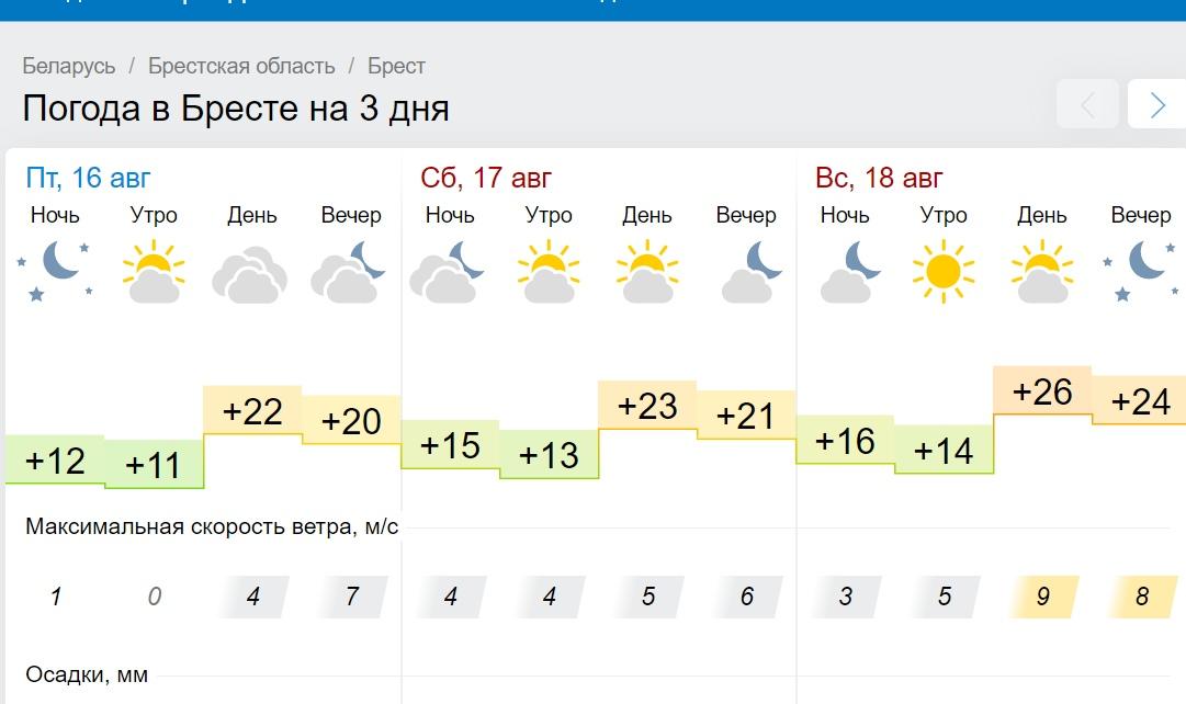 Тепло и без дождя. Все о погоде в Бресте в выходные