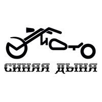 Логотип Синяя Дыня