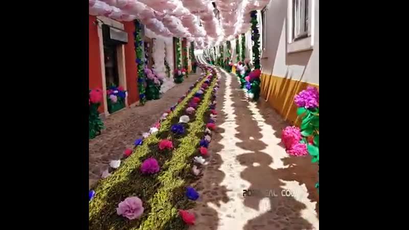 красочный праздник в томаре