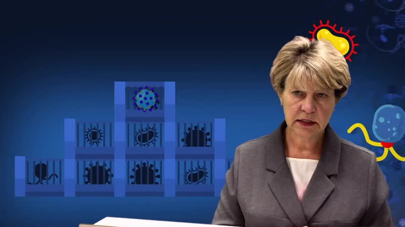 Видеопамятка по вакцинации против коклюша дифтерии столбняка от заведующего ДПО №4 Кориковой Наталии Степановны
