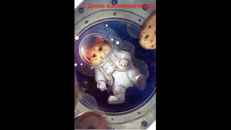 Попугай засовывает хомяка в колесо и крутит Приколы 2019 лучшие русские 1
