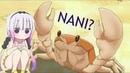 Kanna vs Crab Omae wa mou shindeiru. NANI? maid dragon