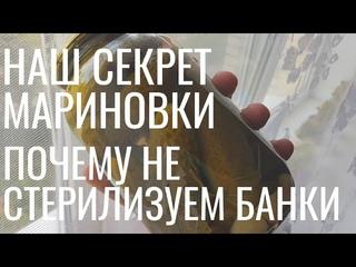 Наш секрет мариновки | ПОЧЕМУ НЕ СТЕРИЛИЗУЕМ БАНКИ | ОГУРЦЫ на зиму 16 августа 2019