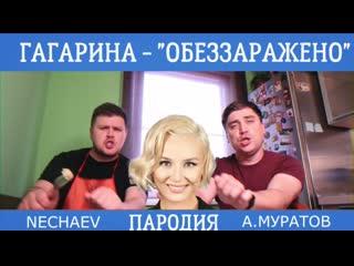 Полина Гагарина - Обезоружена (Пародия)