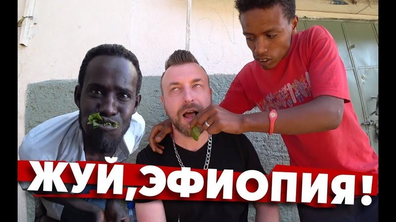 Жуй, Эфиопия! Попробовал непонятное зелье.