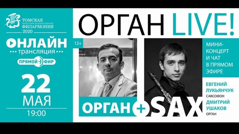 Орган LIVEМини концерт и чат в прямом эфире Орган SAX