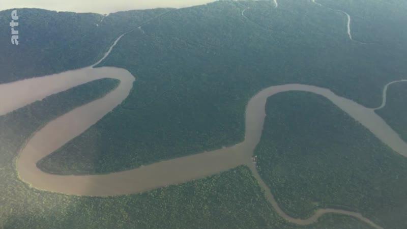 Voyages aux Amériques 0Brésil la vie sauvage dans les marécages du Pantanal