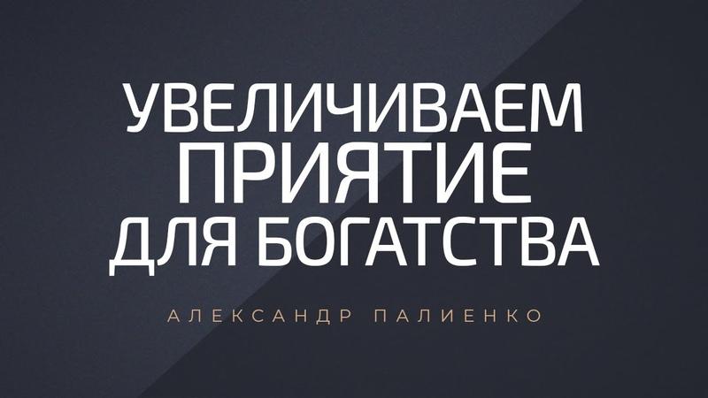 Увеличиваем приятие для богатства Александр Палиенко
