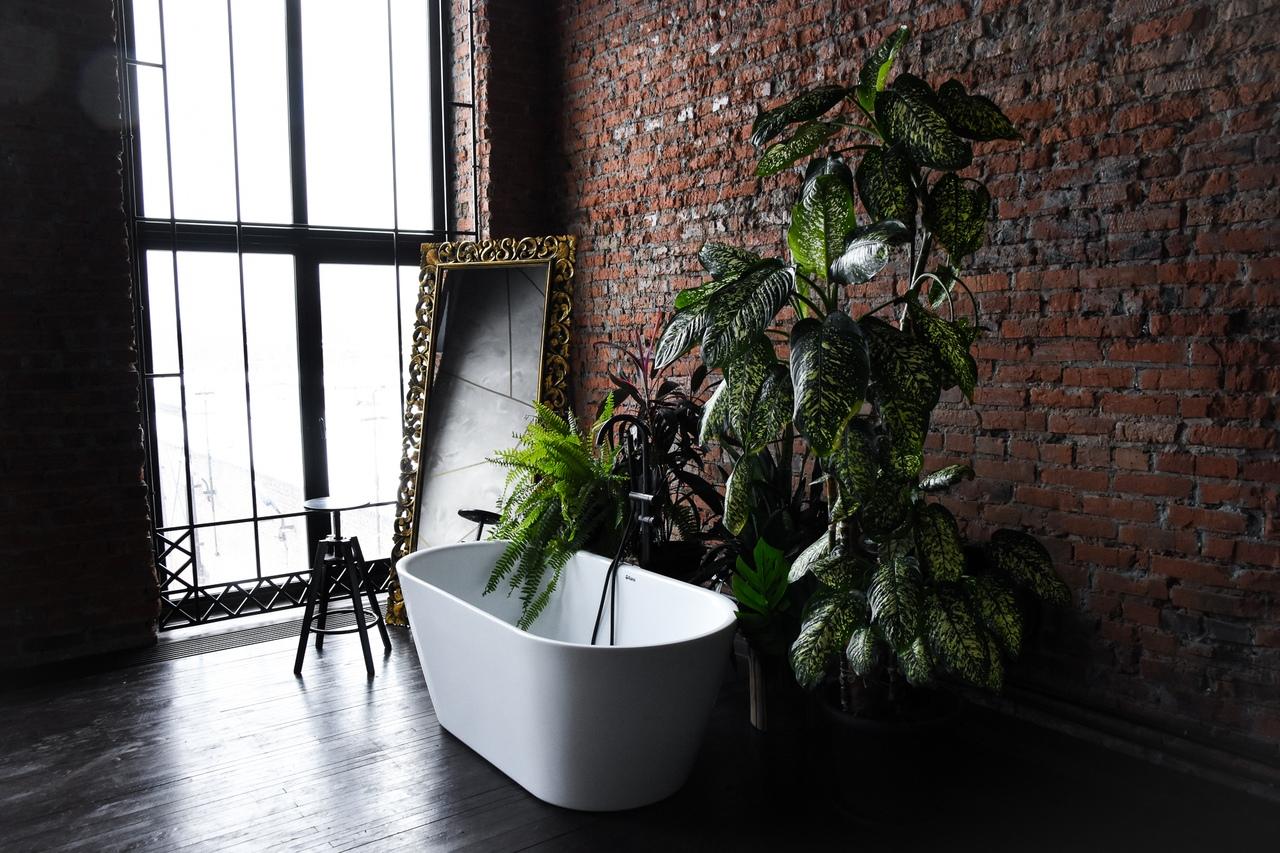 фотостудия ростов с аквазоной салатик, простой приготовлении