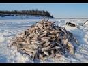 Зимняя рыбалка на сети в Сибири в жуткий мороз!