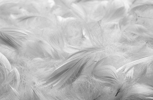Стандартные одеяла могут вызывать аллергическую реакцию у людей с аллергией на перья.