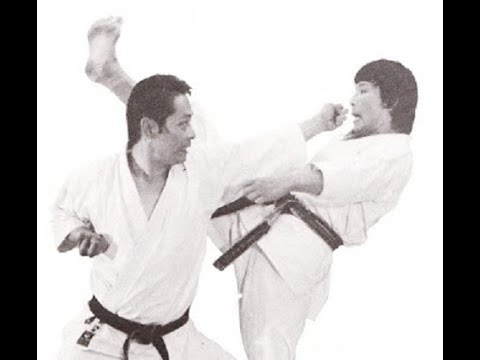 Asai Tetsuhiko 10 Dan shotokan karate kumite demonstration