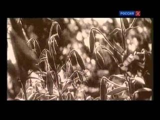 Фантомные боли (Вера Мухина и Алексей Замков) - Больше, чем любовь