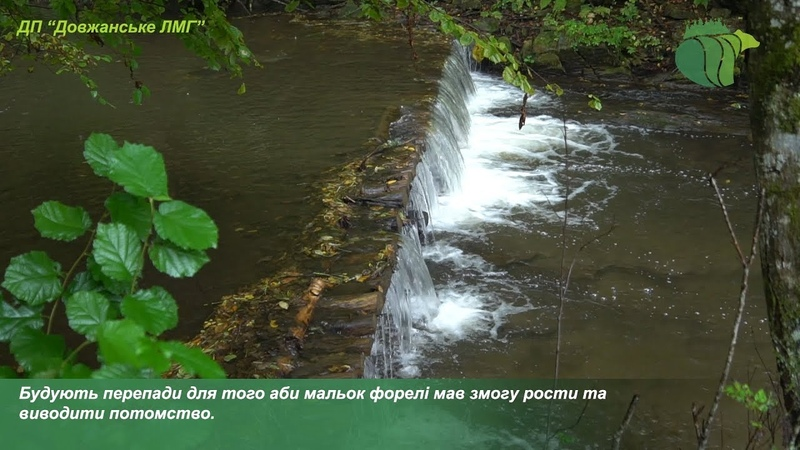 Лісівники Іршавщини будують перепади на гірських річках
