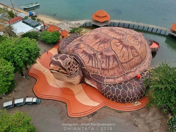 Океанариум в Индонезии в виде черепахи ura-ura Ocean Par - двухэтажное здание в виде гигантской черепахи. На нижнем этаже расположен морской парк, на верхнем - аквариумы, кафе и разные