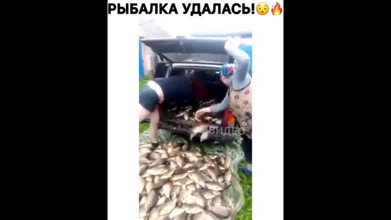Рыбалка удалась hs,fkrf elfkfcm