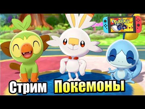 Покоряем Галар в Pokemon SwordShield (Switch) Стрим 2