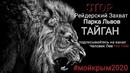 Андрей Сычёв фотография #5
