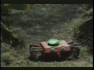 Два милых жучка расчищают дорогу (1979) (Авторский одноголосый Нэля Лаврова)