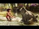 """Книга джунглей - Песня """"Простые радости"""""""