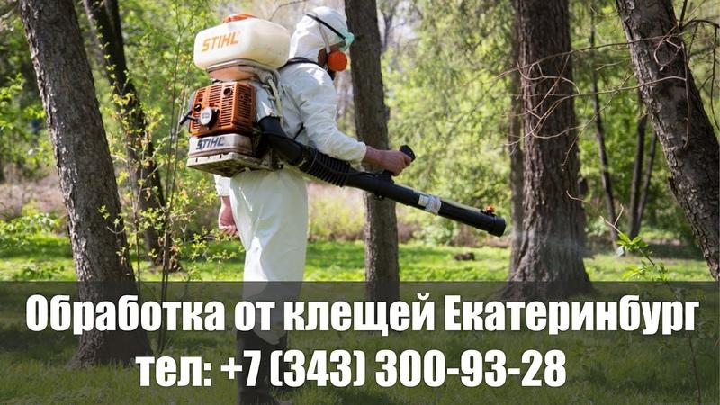 Акарицидная обработка участка от клещей в Екатеринбурге и Свердловской области