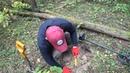 Что можно найти в лесу В поисках золота!