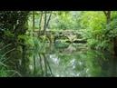Прогулка по Черной речке к акведуку