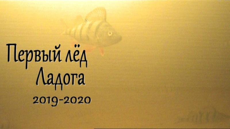 Первая рыбалка на Ладоге сезона 2019 2020 Подводные съемки