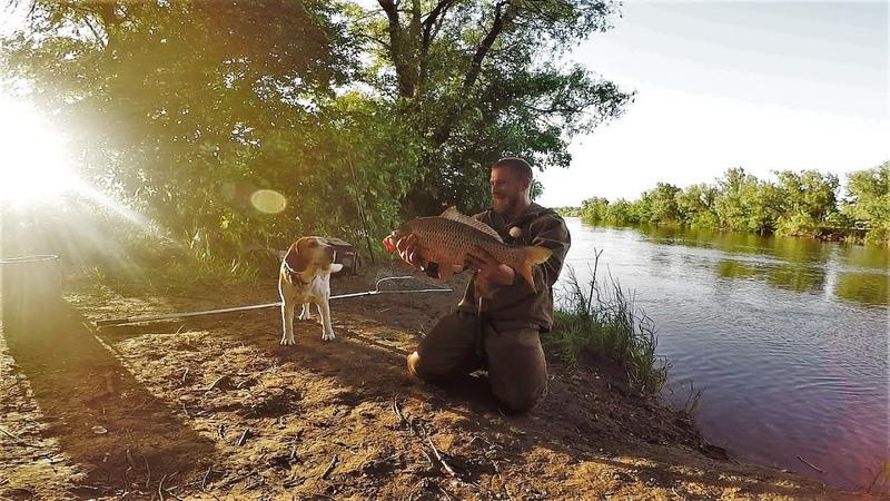 Рыбалка Просто Огонь Жизнь в Палатке На Диком Берегу Копчёный Сазан