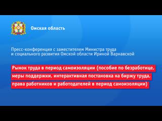Пресс-конференция: рынок труда в период самоизоляции и меры поддержки безработных жителей Омской области