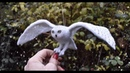 Snowy Owl In Flight Needle Felt Bird Tutorial