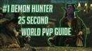 Demon Hunter BFA | 25 Second World PVP Guide