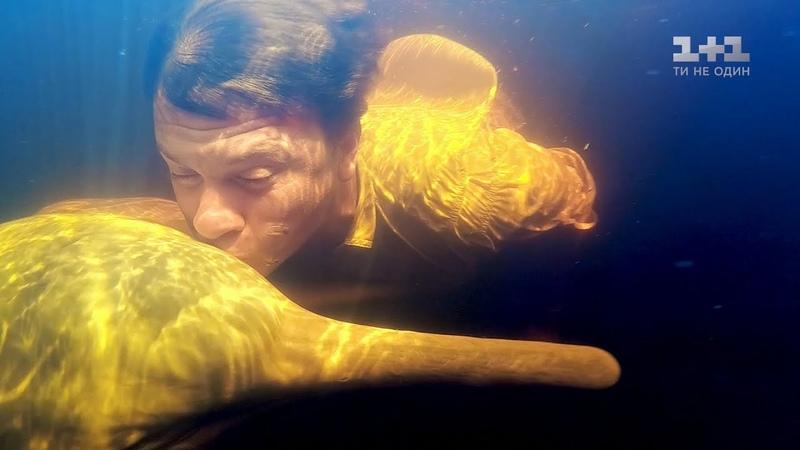 Пресноводные дельфины и традиционное блюдо из бананов. Бразилия. Мир наизнанку 10 сезон 34 выпуск