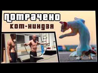 ПОТРАЧЕНО Кот-ниндзя   ПОТРАЧЕНО