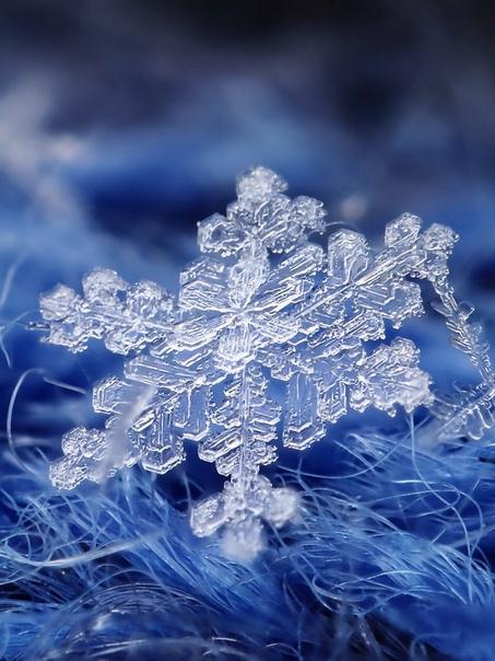 Красивые Зимние Обои На Телефон Скачать Бесплатно